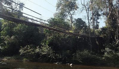 bamboo-bridge1